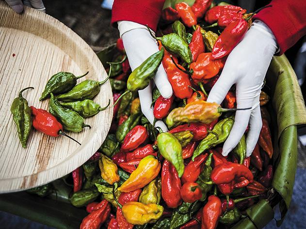 Burning-Desire-peppers-1