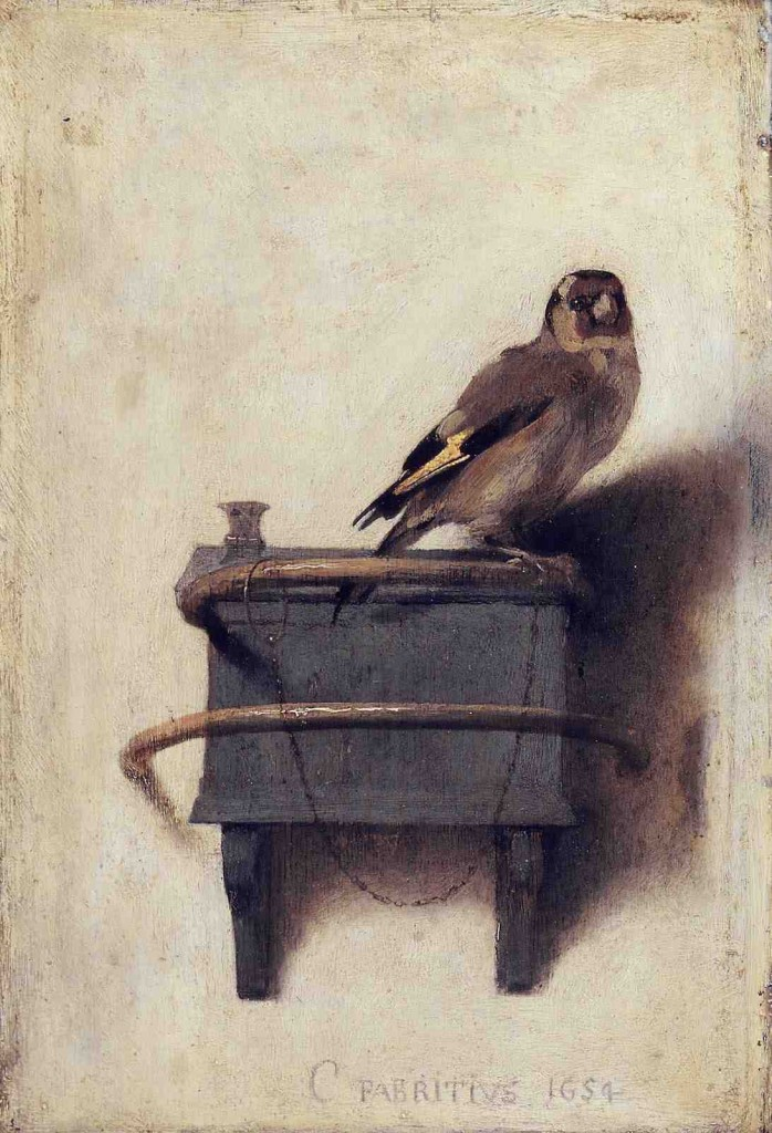 Fabritius-Goldfinch