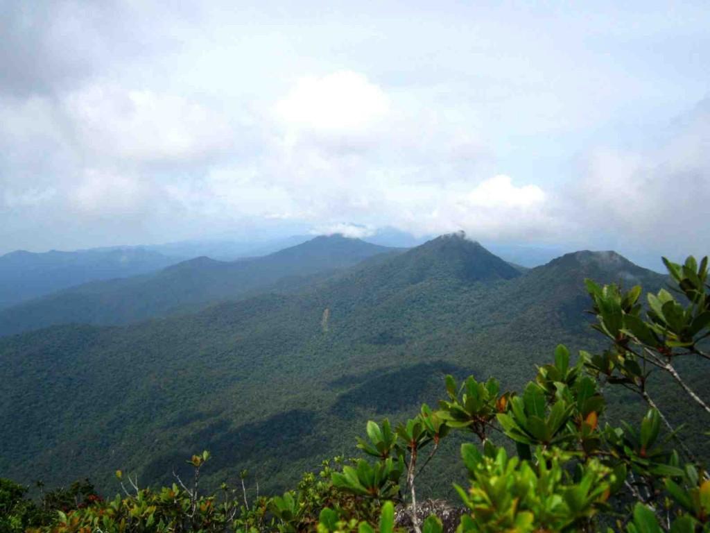 Mt. Thumbpeak
