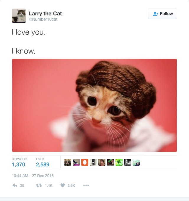 larry-to-leia